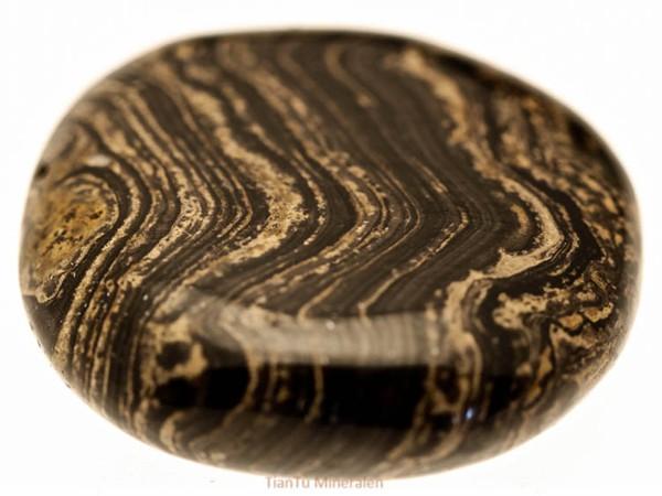stromatoliet of slangen jaspis