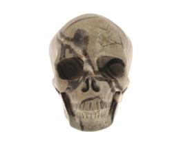 septarie schedel