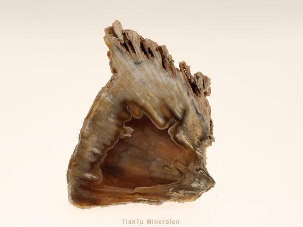 florida stone