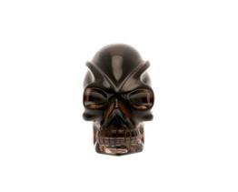 rookkwarts traveller schedel, leandro