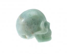 Aquamarijn schedel Leandro de Souza