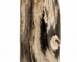pol-verst-hout-1-2