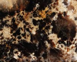 zwarte opaal